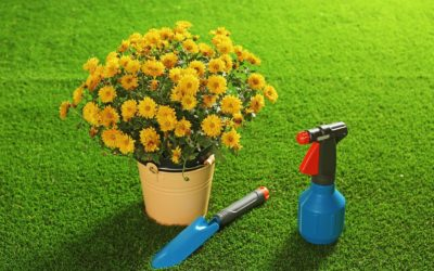 5 Colorful Gardening Ideas with Synthetic Grass in St. Louis