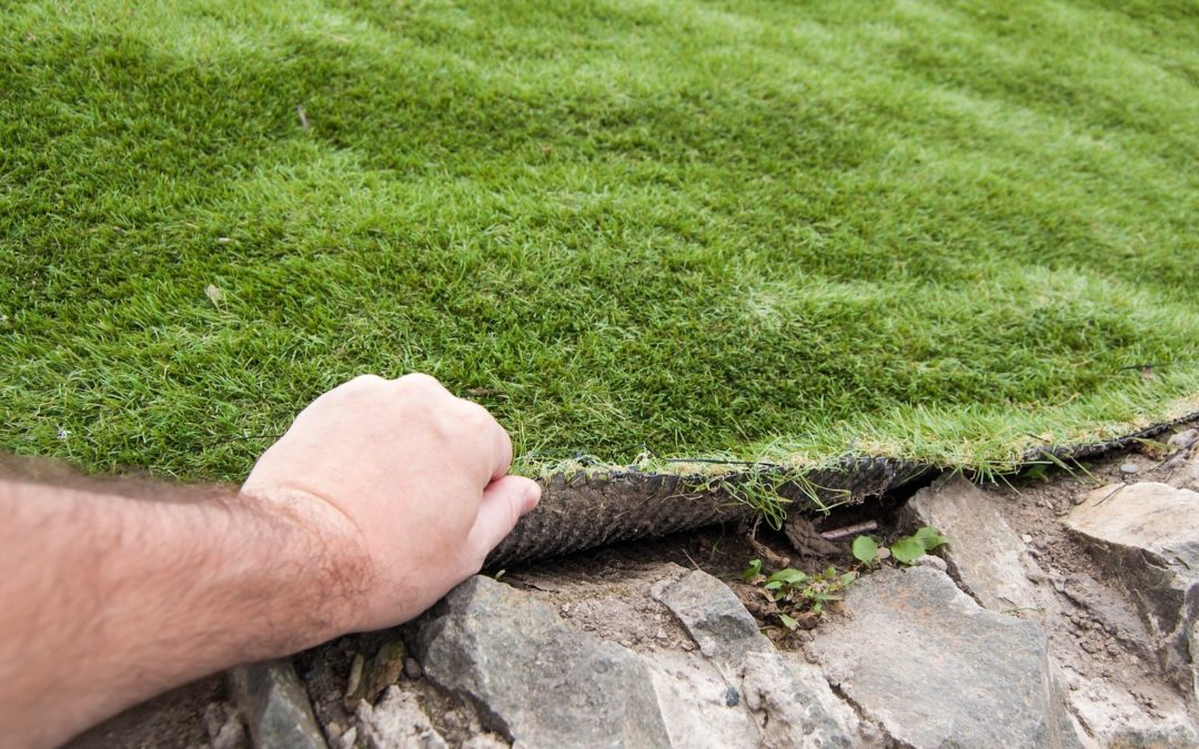 Reduce Grass-Induced Rashes with Quality Artificial Grass in St. Louis, MO