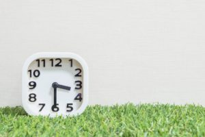 clock artificial grass